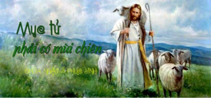 """Tại Sao Người Công Giáo Được Gọi Là """"Con Chiên"""" ?"""