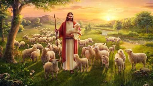 Được sống dồi dào (03.5.2020 – Chúa Nhật Chúa Chiên Lành)