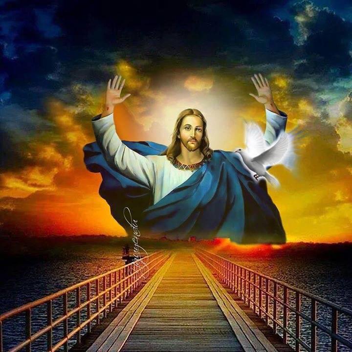 Lời Thiêng Ý Thánh: 10 câu đáng để suy niệm hàng ngày để đẹp lòng Chúa hơn