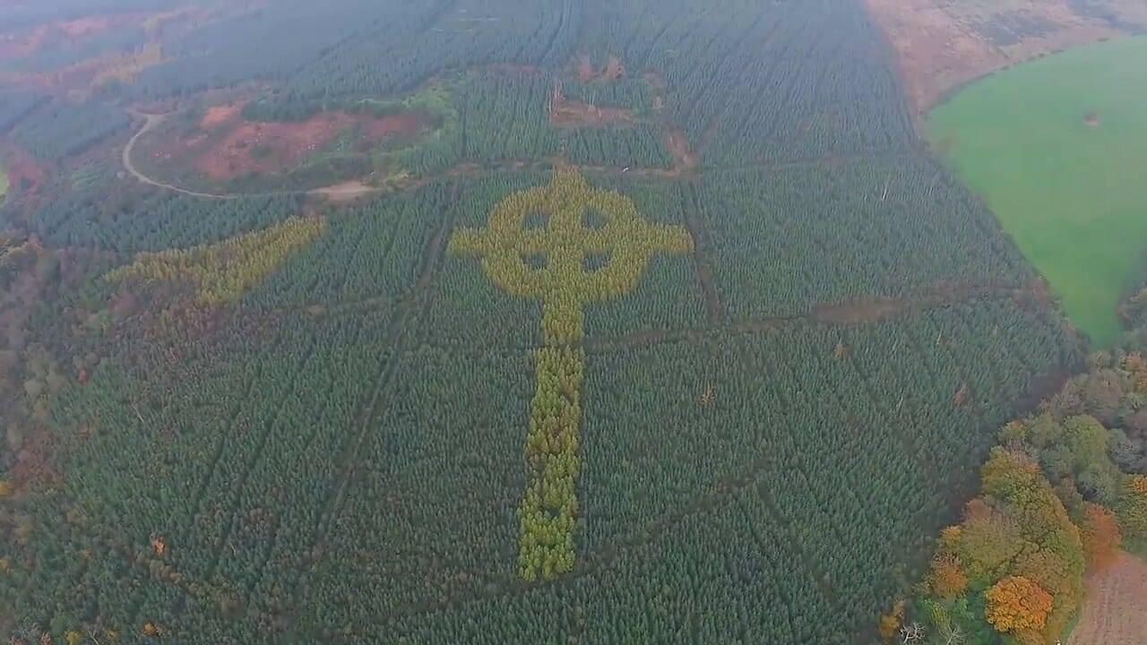 Bí mật của Mảng rừng Thánh giá khổng lồ ở Ireland