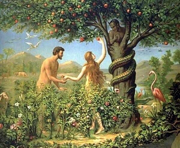 Tại Sao Thiên Chúa Mặc Đồ Cho Adam Và Eva?