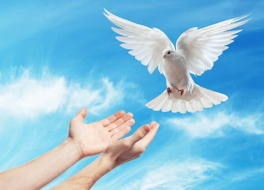 Kinh Cầu Tổng Lãnh Thiên Thần Micae