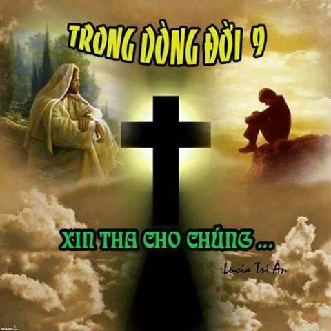 TRONG DÒNG ĐỜI 9 – XIN THA CHO CHÚNG…