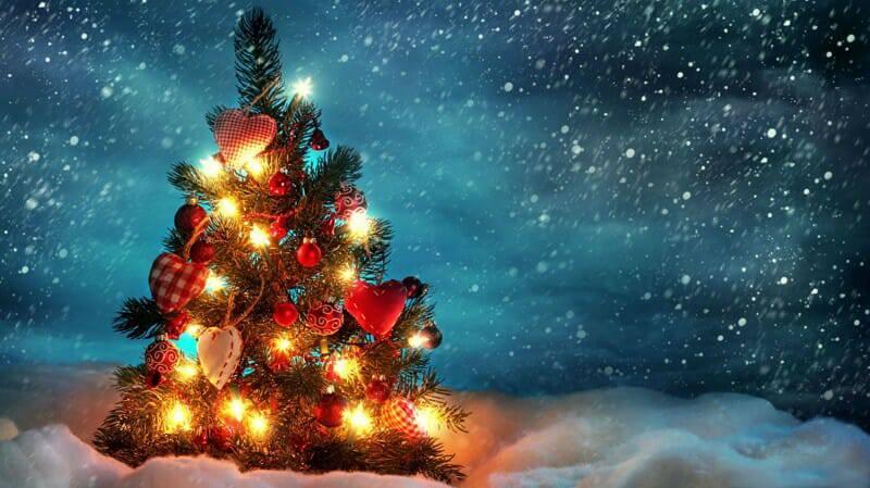 Đừng dẹp hang đá và cây thông Giáng Sinh! Mùa Giáng Sinh vẫn còn!