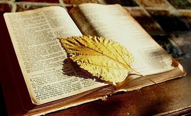 kinh thánh cho mọi người